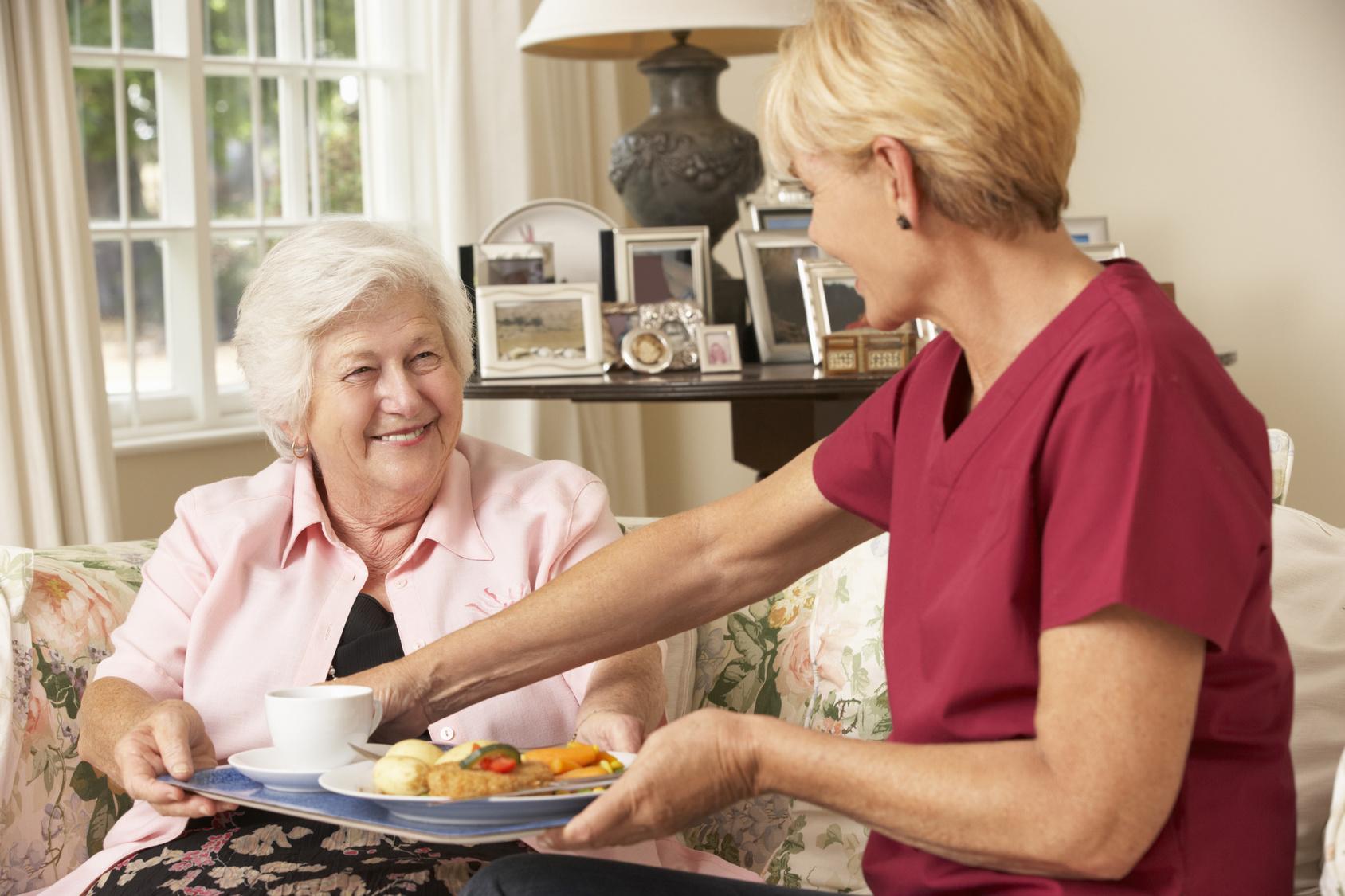 Senior Home Care Matteson, IL, Illinois